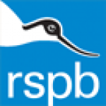 Bad for Birds? What the RSPB Think